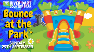 Bounce at the Park Banner