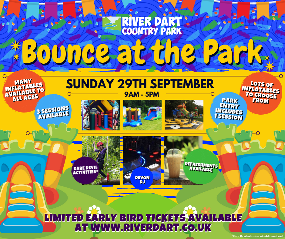 Bounce at the Park 2019