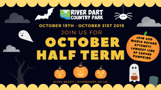 October Half Term cover